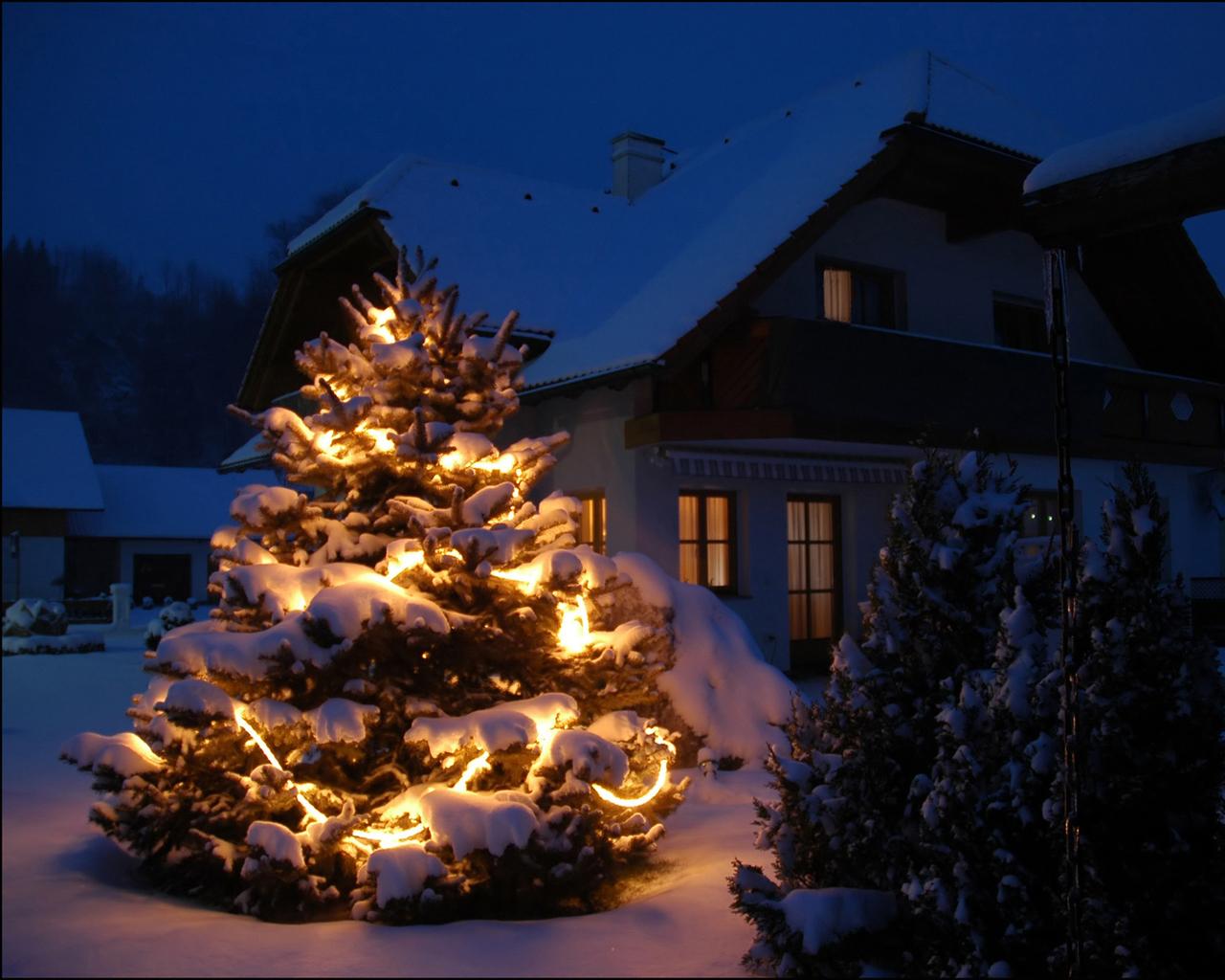 Новогодняя елка дома.